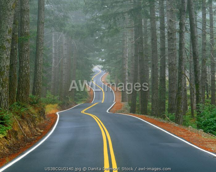 USA, Oregon, Sisiyou National Forest