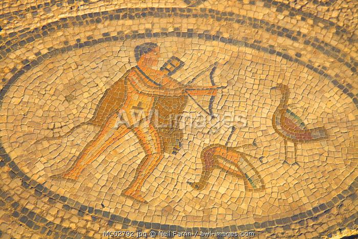 Mosaic At Excavated Roman City, Volubilis, Morocco, North Africa