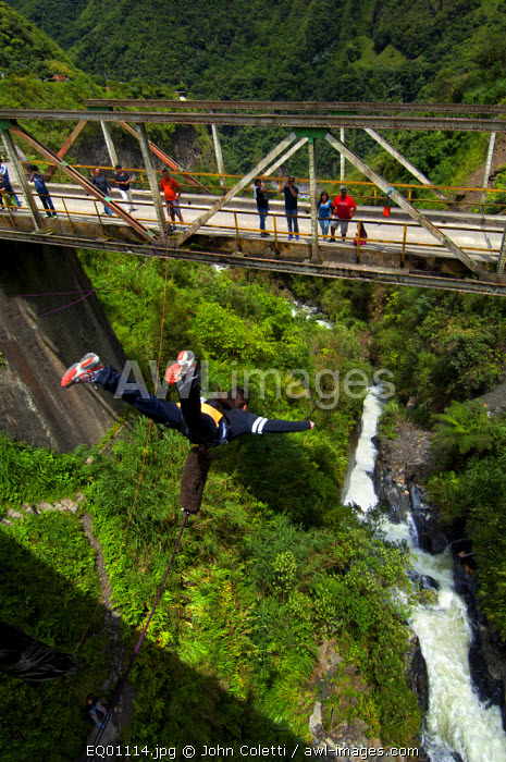 Bridge Jumping, Also Known As Puenting, Over The Rio Pastaza Valley, River Gorge, Route of The Waterfalls, Ruta de las Cascadas, Banos, Gateway To The Amazon, Tungurahua Province, Ecuador