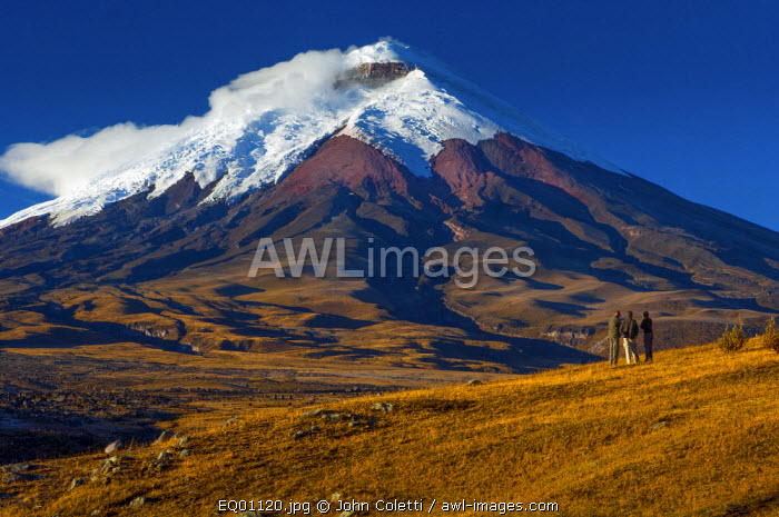 Cotopaxi National Park, Snow-Capped Cotopaxi Volcano, One of The Highest Active Volcanoes, Hosteria Tambopaxi, High Plains Grasslands or Paramo, Altitude of 12,000 Feet, Tourists, Cotopaxi Province, Ecuador