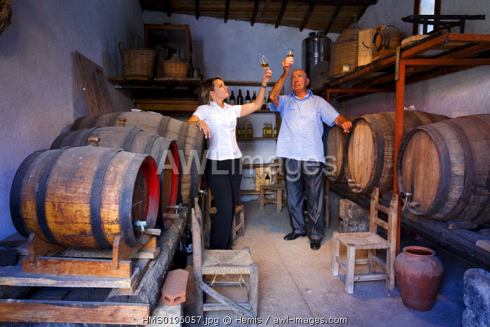Italy, Sardinia, Orastino province, Riola Sardo, Hotel Lucrezia, testing wine session in the wine cellar of this charming hotel which also proposes cooking lesson