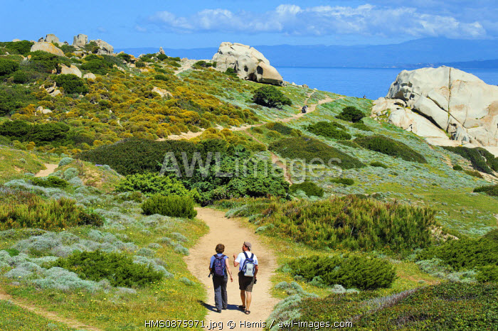 Italy, Sardinia, Olbia Tempio Province, Santa Teresa Gallura, Capo Testa, granite peninsula facing Corsica, hikers on the trails amidst rounded rocks sculpted by wind