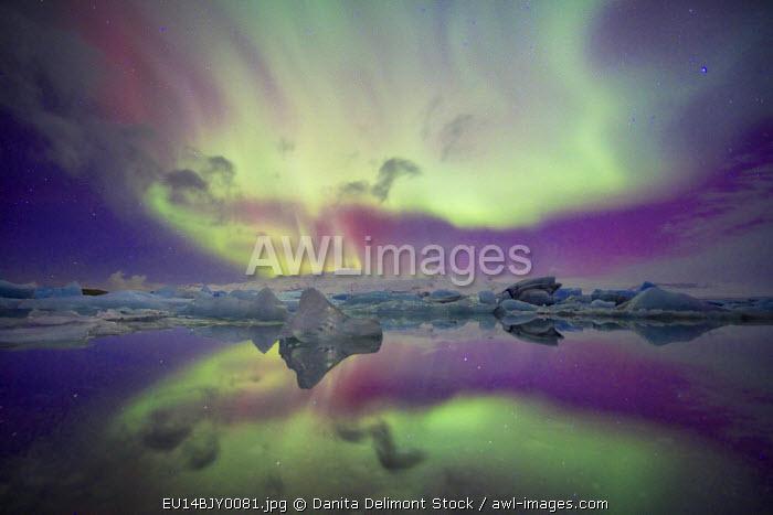 Iceland, Jokulsarlon. Aurora lights reflect in lagoon