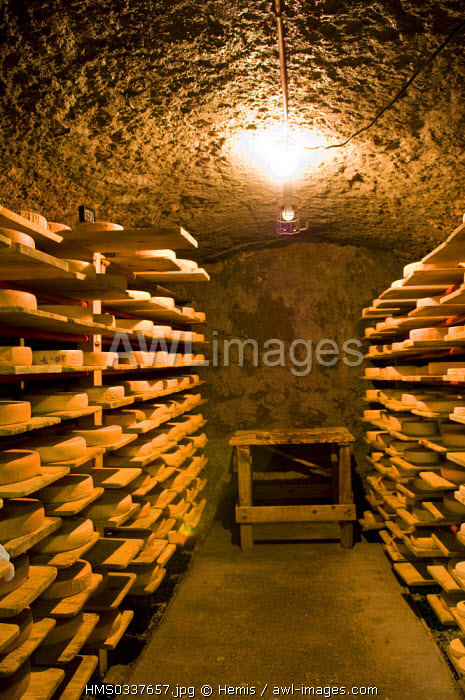 awl-images.com - Switzerland / Switzerland, Canton of Valais, Le Fresnay, cheese ripening in the cellar of Au de Morge Swiss cheese making dairy