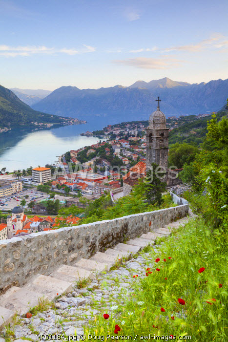 awl-images.com - Montenegro / Elevated view over Kotor's Stari Grad (Old Town) and The Bay of Kotor, Kotor, Montenegro