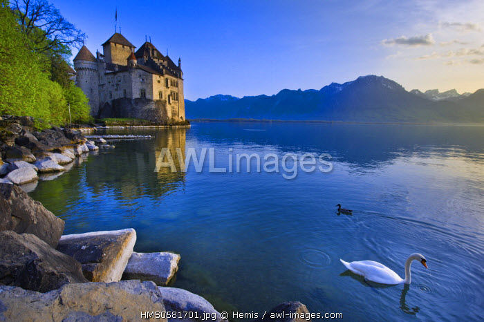 Switzerland, Canton of Vaud, Leman lake, Chillon castle at the south of Montreux