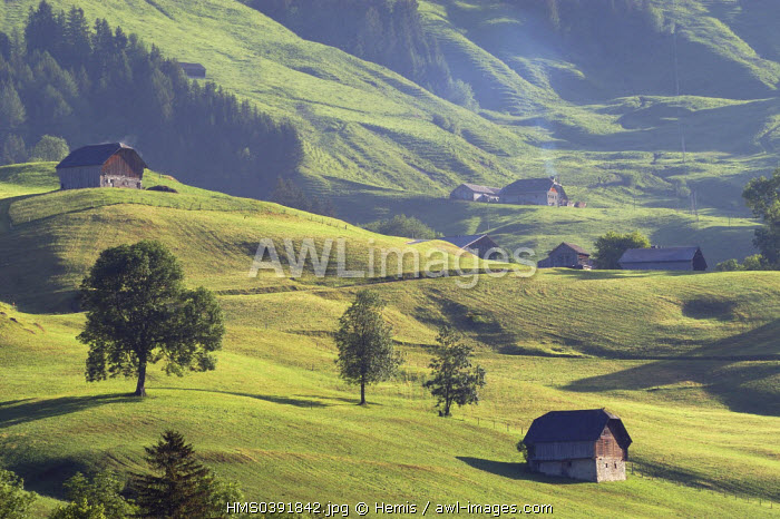 Switzerland, Canton of Vaud, Pays D'enhaut, Chateau d'Oex, high mountain pasture chalets