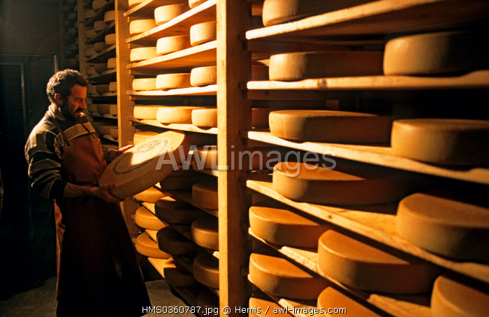 Switzerland, Canton of Vaud, Pays-d'Enhaut, maturing caves of the cooperative, cheese of Etivaz