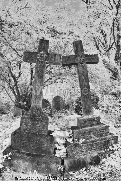Infrared image of the graves in Highgate Cemetery, London, UK