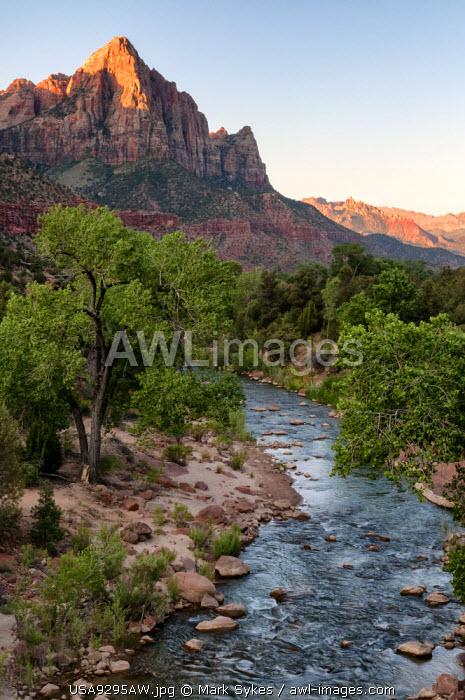U.S.A., Utah, Zion National Park, The Watchman