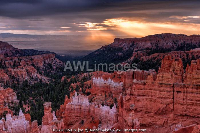 U.S.A., Utah, Bryce Canyon National Park