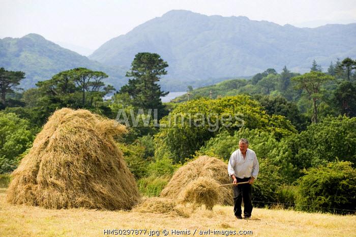 Republic of Ireland, Kerry County, South Coast, national park of Killarney, Muckross traditional Farms, ecomuseum