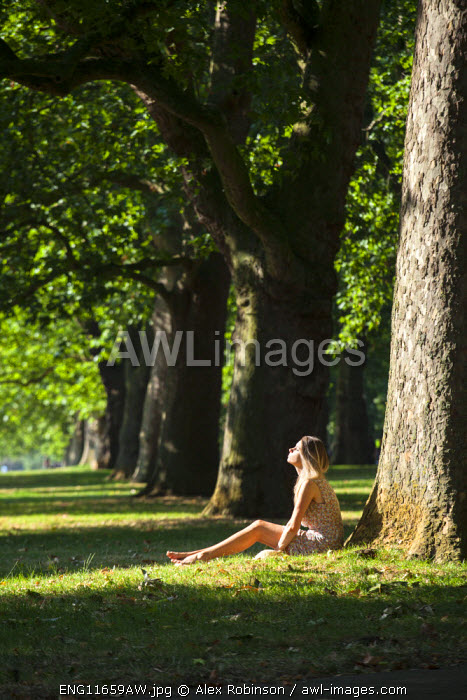 Europe, United Kingdom, England, London, Hyde Park, an attractive young woman sitting under a London Plane tree MR