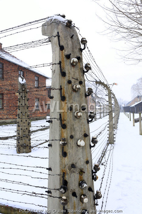 Europe, Eastern Europe, Poland, Auschwitz-Birkenau (German Nazi Concentration and Extermination Camp) Memorial and State Museum, barbed wire fences around the residential blocks