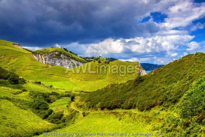 Green hills landscape along the coast of Gipuzkoa, Basque Country, Spain