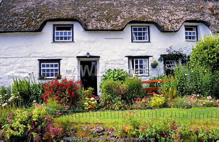 United Kingdom, Cornwall, Coverack, cottage