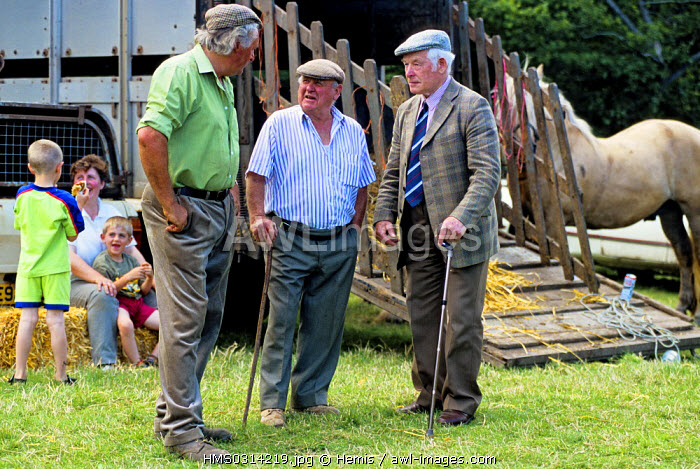 United Kingdom, Wales, Black Mountains, cattle fair in Llanthony
