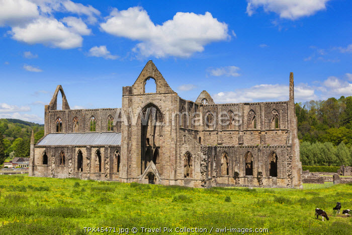 Wales, Monmouthshire, Tintern Abbey