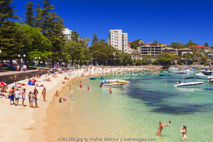 Australia, New South Wales, NSW, Sydney, Manly, Manly Cove Beach