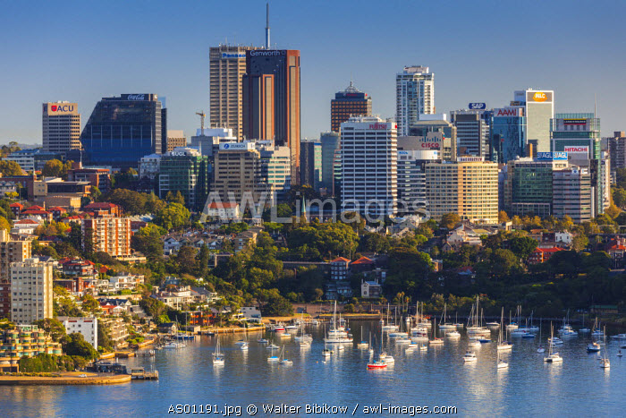 Australia, New South Wales, NSW, Sydney, North Sydney, elevated view, morning