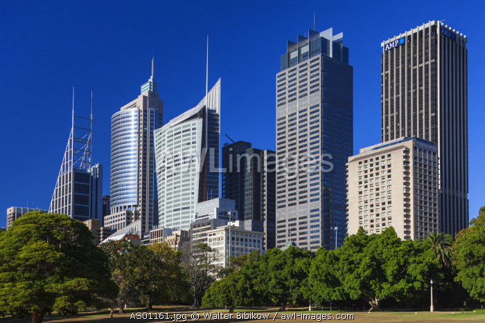 Australia, New South Wales, NSW, Sydney, CBD, Central Business District high rise buildings on Macquarie Street