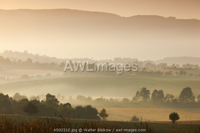 Australia, Victoria, VIC, Yarra Valley, landscape, dawn