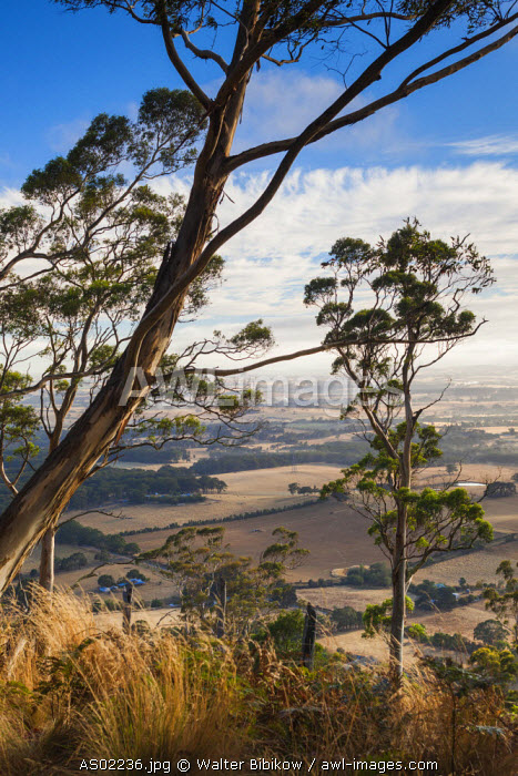Australia, Victoria, VIC, Buninyong, elevated view of landscape from Mount Buninyong