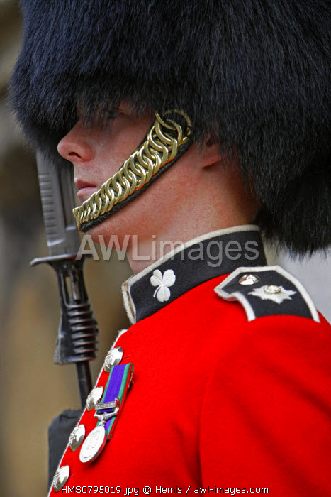 United Kingdom, London, Horse Guard