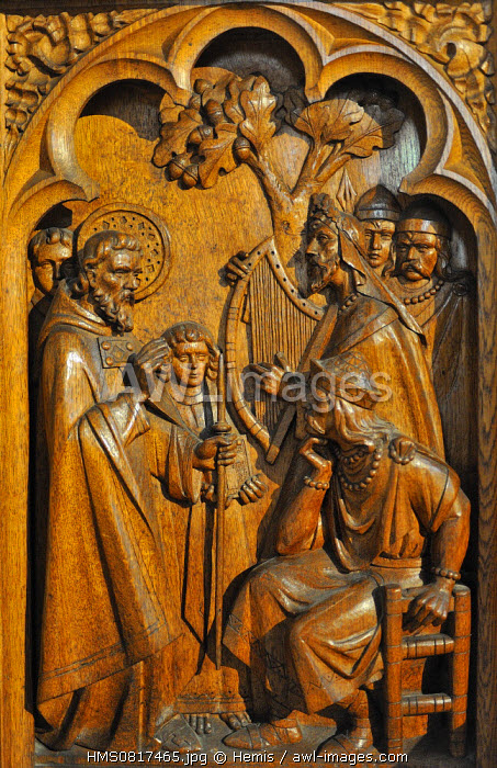 Ireland, County Kilkenny, Kilkenny, St Canice's Cathedral, Sculpted stall depicting St Canice preaching the gospel to king Colman