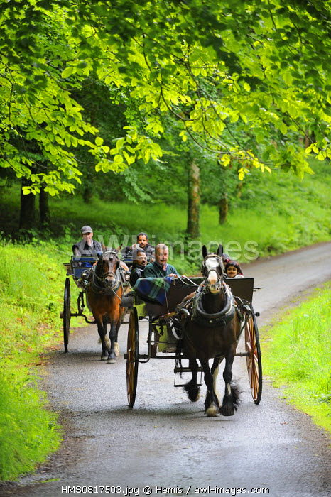 Ireland, County Kerry, Killarney, Muckross Gardens, Horse carriages