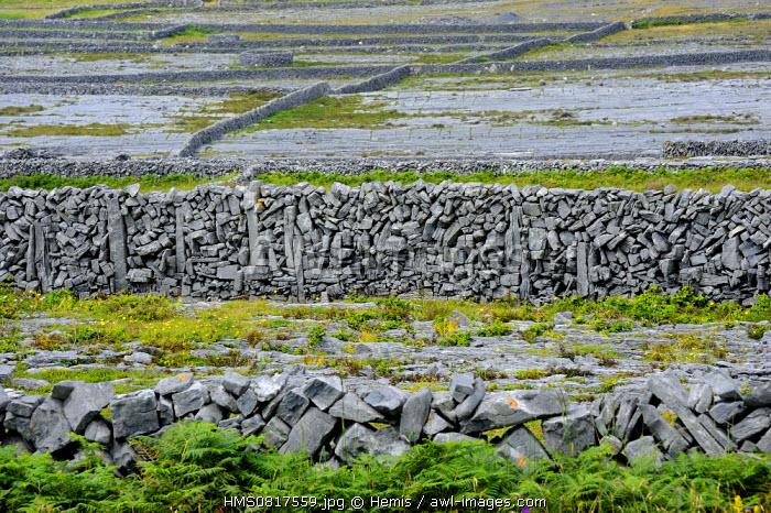 Ireland, County Galway, Aran Islands, Inishmore, Stone walls