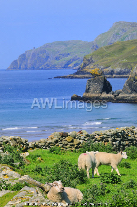 Ireland, County Donegal, Muckross Head