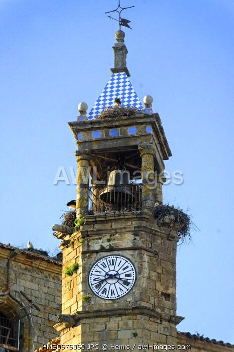 Spain, Extremadura, Trujillo, plaza Mayor, church of San Martin, storks nest on the tower