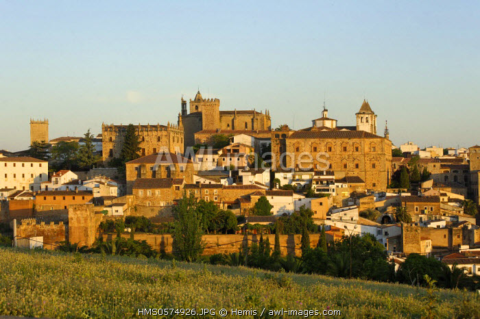 Spain, Extremadura, Caceres, old town listed as World Heritage by UNESCO, city surrounded by ramparts of Arab origin forming a series of medieval fortified houses and Renaissance palaces