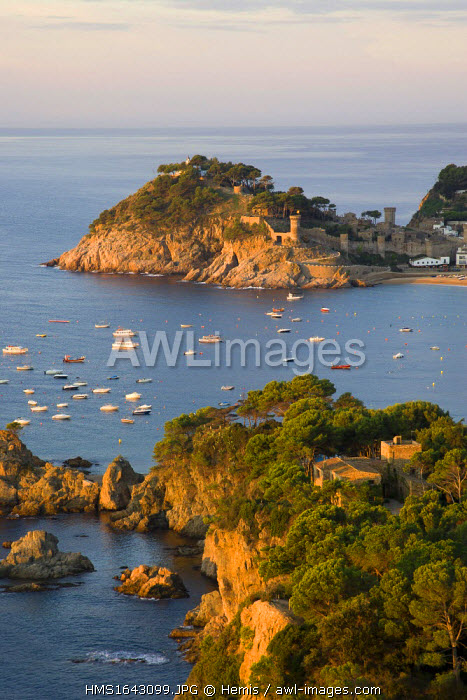 Spain, Catalonia, Costa Brava, Girona Province, La Selva comarca, Tossa de Mar, Rocky coast