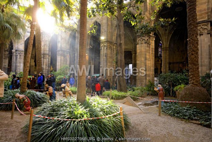 Spain, Catalonia, Barcelona, Plaza de la Seu, Santa Eulalia Cathedral (also called Seu), Cloister,