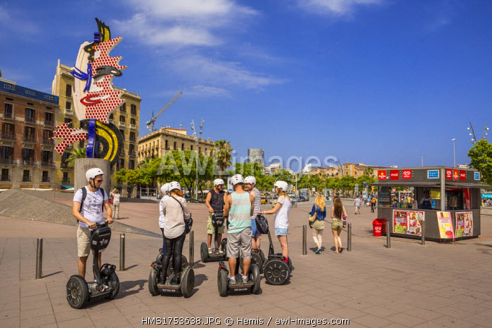 Spain, Catalonia, Barcelona, Port Vell, sightseeing in Segway, sculpture Cap de Barcelona (1992)