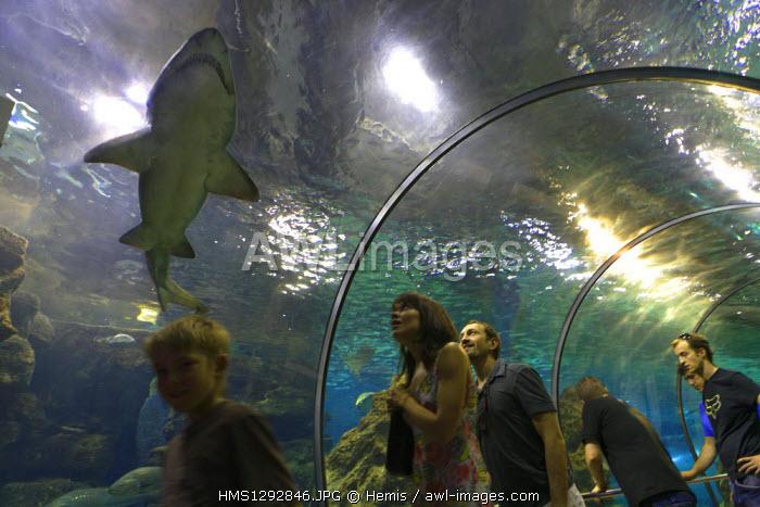 Spain, Catalonia, Barcelona, Moll d'Espanya, Barcelona Aquarium, underwater tunnel