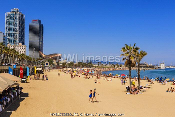 Spain, Catalonia, Barcelona, Barceloneta, the beach of Sant Sebastia