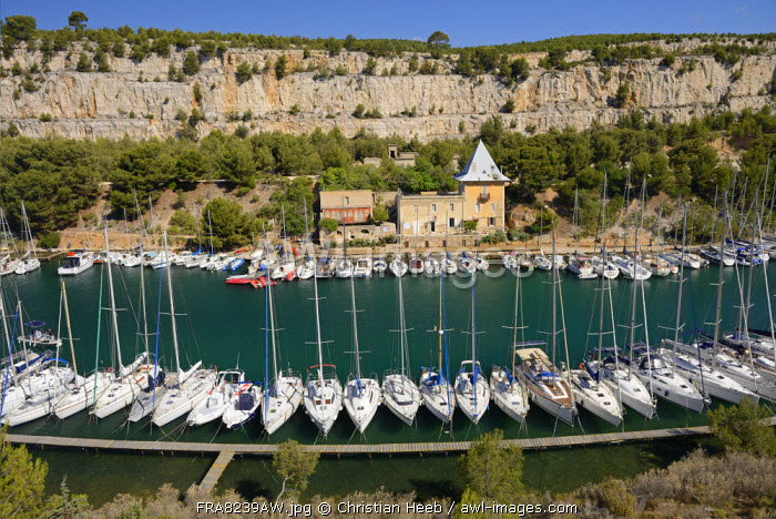 Harbour in Cassis, Provence Alpes Cote d'Azur, Provence, France, Europe