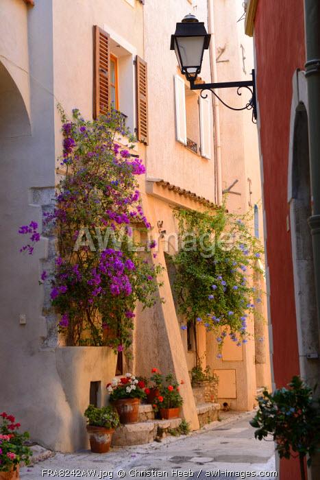A pretty street in Roquebrune Village, Cote D'azur, France, Europe