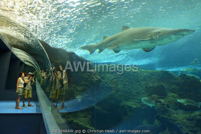 Crete Aquarium, Kato Gouves, Crete, Greece, Europe
