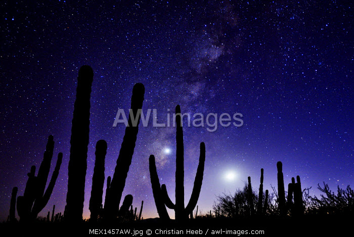 Night sky, La Ventanaz, Baja California, Mexico