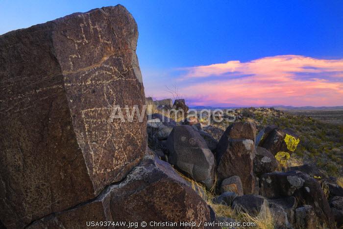 Three Rivers Petroglyph Site,  BLM, New Mexico, USA