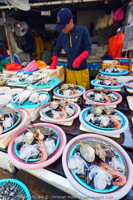 Asia, Republic of Korea, South Korea, Busan, Jagalchi fish market