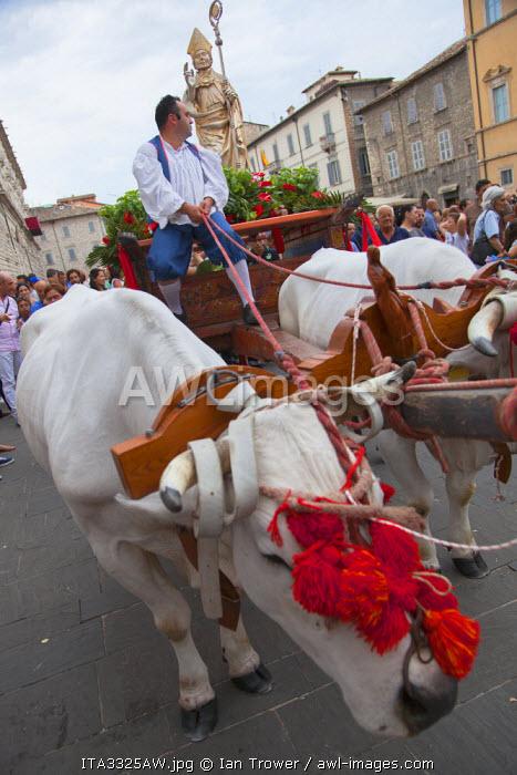 Procession of St Emygdius in Piazza Arringo, Ascoli Piceno, Le Marche, Italy