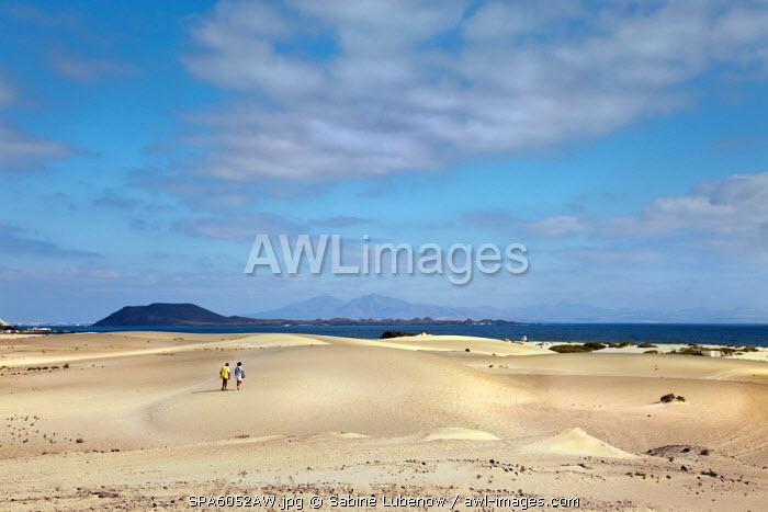 Dunes, El Jable, Corralejo, Fuerteventura, Canary Islands, Spain