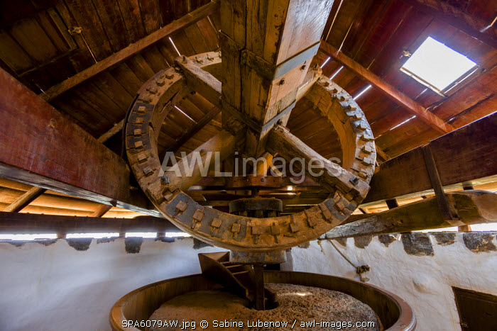 Wind mill, Pueblo Majarero, Museo Molino, Antigua, Fuerteventura, Canary Islands, Spain