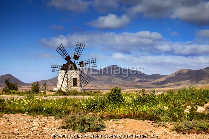 Wind mill, Molino de Tefía, Tefia, Fuerteventura, Canary Islands, Spain