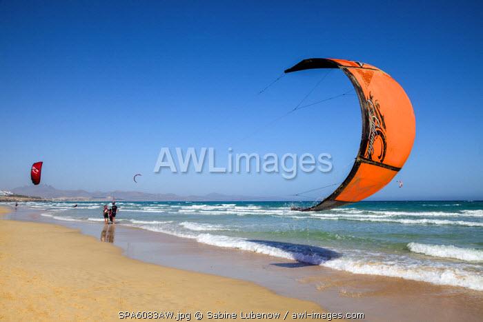 Kite surfer, Playa Barca, Playa de Sotavento, Fuerteventura, Canary Islands, Spain